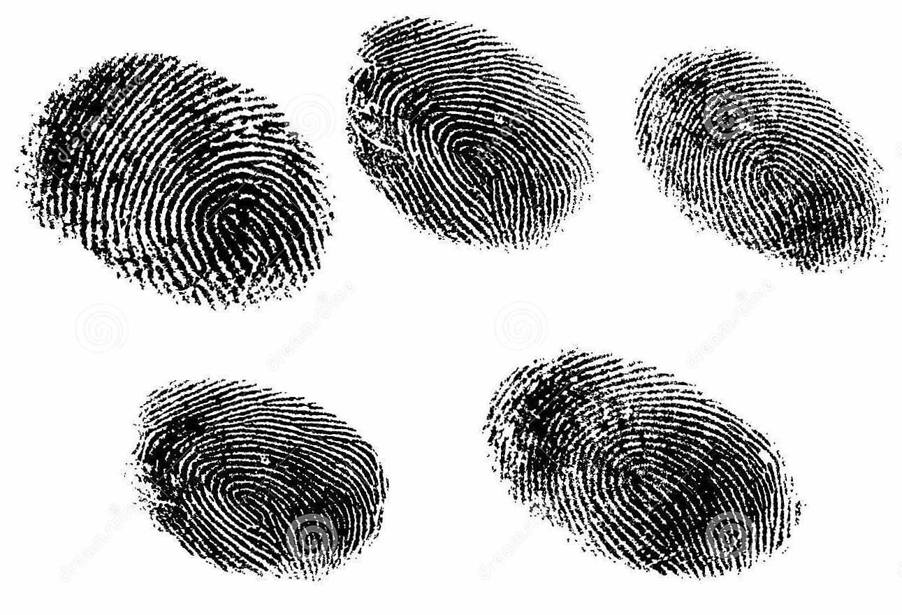 edda8c994f364e3bc149_5-fingerprints-8545662__2_.jpg