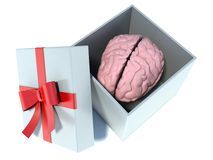 f5198023360e1a2b3d2a_illustration-brain-present-white-gift-box-red-ribbon-42188613.jpg