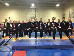 FSPY C Division Gymnastics State Champions