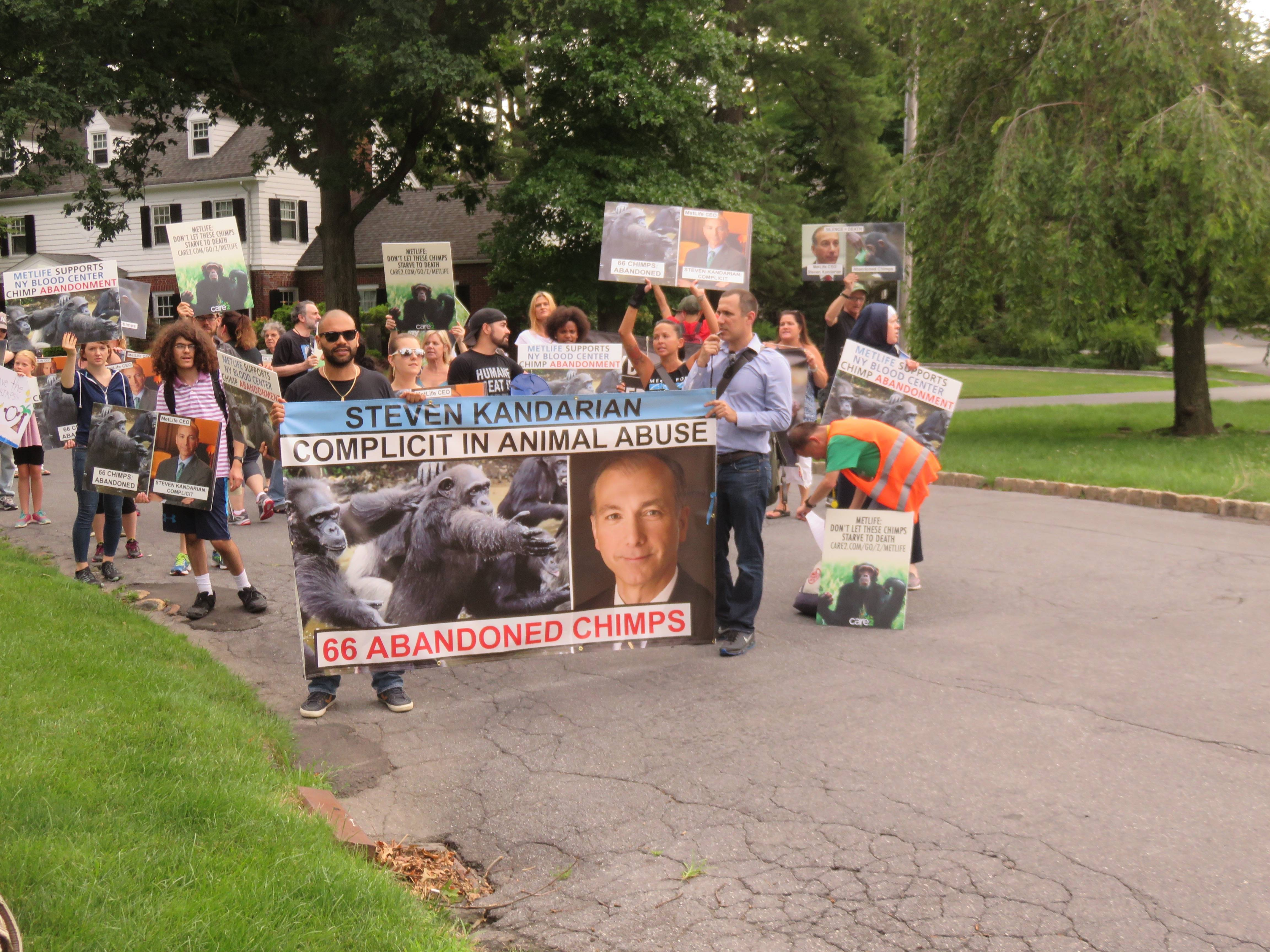 'We Will Continue to Come Back': Animal Rights Advocates Stage Second Protest at MetLife CEO's Summit Residence