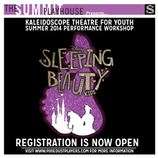 Sleeping Beauty Workshop!