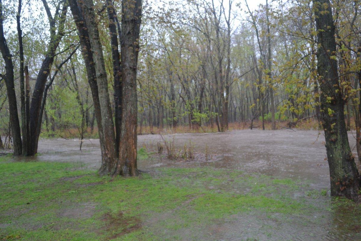 1fbb1a99278b0460505d_stony_brook_crests_at_green_acres_park.JPG
