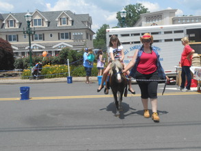Community and Local Businesses Come Together at Berkeley Heights Street Fair, photo 21