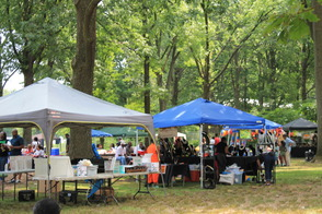Community Enjoys 2014 Roselle House Music Festival, photo 4