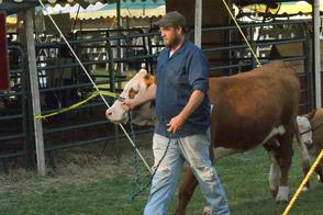 Alpacas, Cows, Trains, Oh My: 4-H Fair Returns to Bridgewater, photo 10