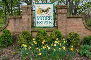 5 Davenport Place, Morris Township