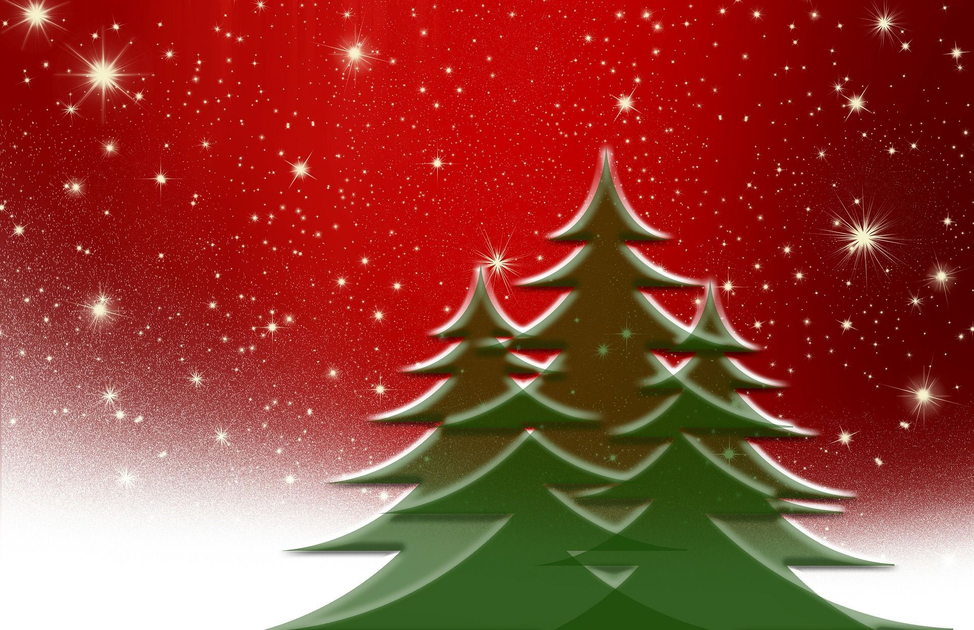3e67e227b694d4055058_christmas-tree-66450_1920.jpg