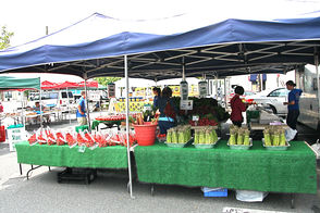 Millburn Farmer's Market in New Location for Summer, photo 8