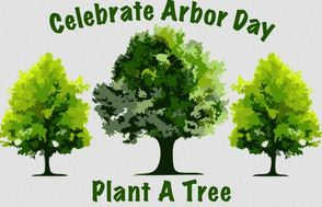 All On One Weekend:  Public is Invited to—Livingston's Arbor Day Celebration, Free Seedlings Pick Up and an Environmentally-Friendly Drug Disposal Session, photo 1
