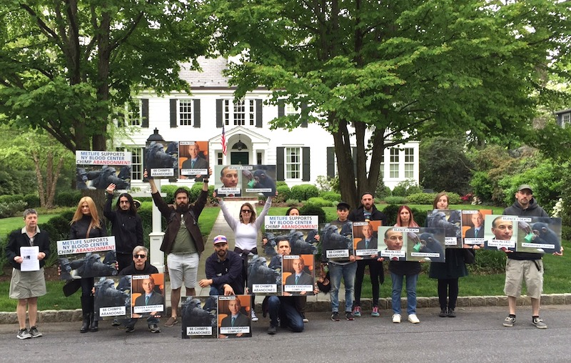 Animal Rights Group Protests Outside of MetLife CEO's Residence in Summit
