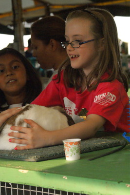 Alpacas, Cows, Trains, Oh My: 4-H Fair Returns to Bridgewater, photo 2
