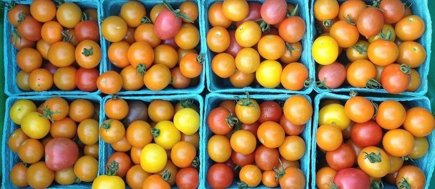 9efff0b86554d961c041_farmers_market.jpg