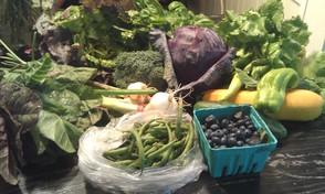 Senior Residents Get Jersey Fresh!