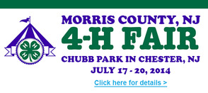 Morris County 4-H Fair Needs Volunteers..Great Family Fun in Chester This Weekend, photo 1
