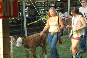 Alpacas, Cows, Trains, Oh My: 4-H Fair Returns to Bridgewater, photo 11