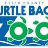 Small_thumb_8b5d527e99344f4ccc73_turtle_back_zoo