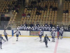 Chatham Hockey Advances to State Quarterfinals with Victory over Montville, photo 7