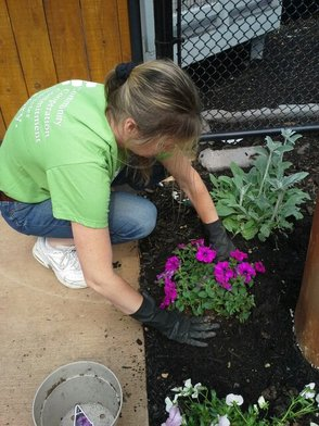 Investors Bank Helps Spruce Up Zoo, photo 4
