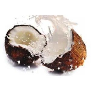a7356dd3ea1b07234bb2_coconut-300x2002.png
