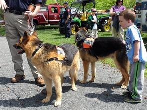Towamencin Community Day Packs Fischer's Park, photo 6