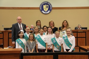 Girl Scout Troop 4564
