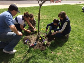 Miss Colbert's students carefully planting