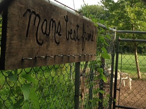 'Paws Park' for Bernards Township Dogs