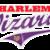 Tiny_thumb_217a290572312719d180_hw_throwback_logo