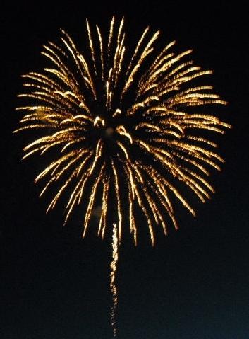 32051edae8967a29c5ff_Fireworks-yellow__great_flower_with_stem.jpg