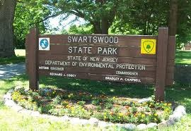 25d5dc382bc4f90167e5_Swartswood_state_park.png
