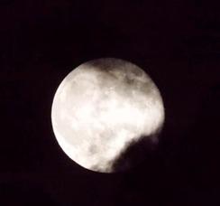 Super Full Moon Visible Over Warren, photo 1