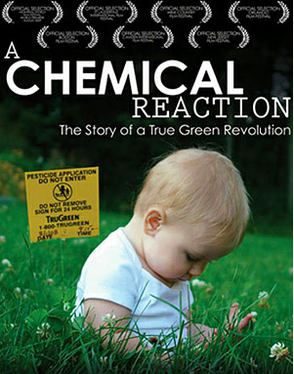 "Free Documentary Screening of ""A Chemical Reaction"", photo 1"