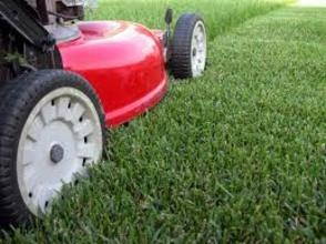 South Orange: Does the Person Mowing Your Lawn Have a License?, photo 1