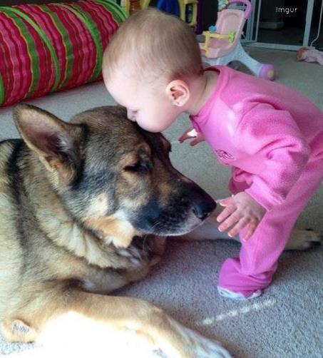 79d90efb469aab424c7b_Dog_baby_kiss.jpg