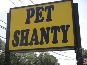 Top_story_2e3e2467efdad4cb33e4_pet_shanty