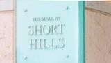 Thumb_a208213d4dea1f735bd5_short_hills