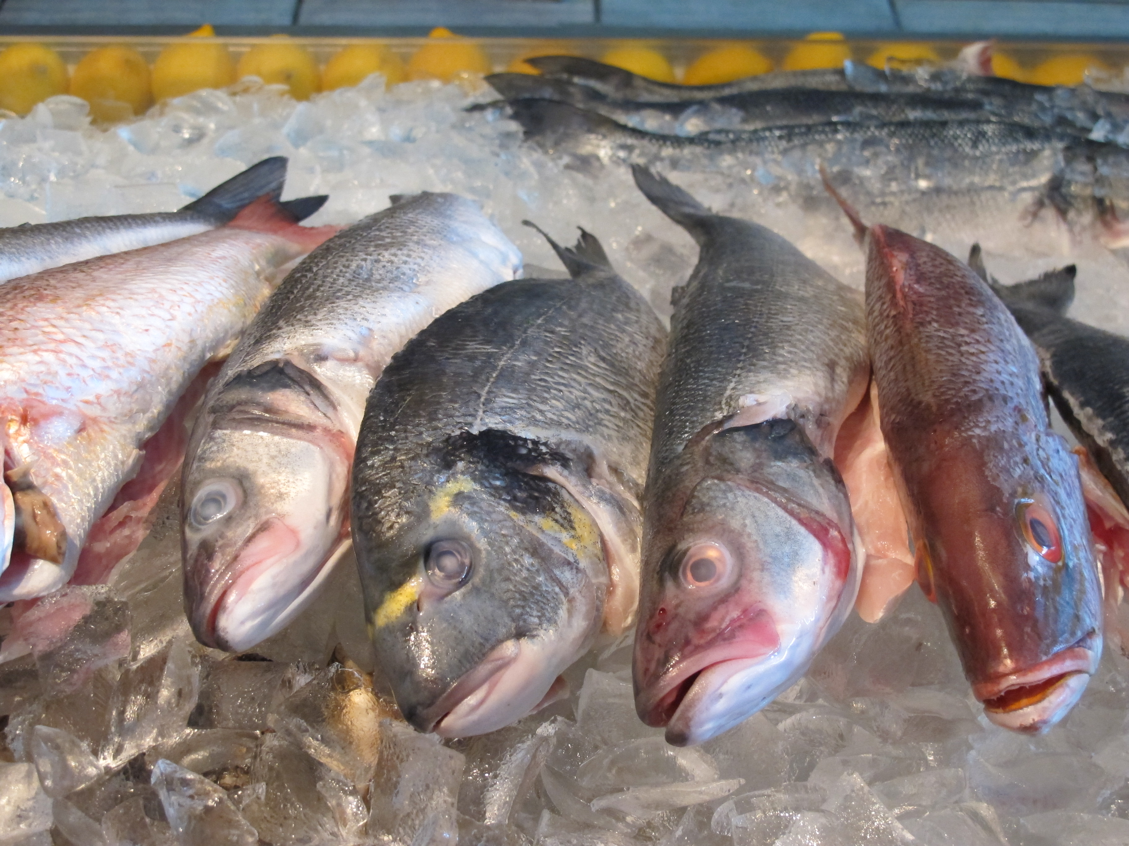 Westfield s limani seafood grill adds fresh fish market for Fish market paterson nj