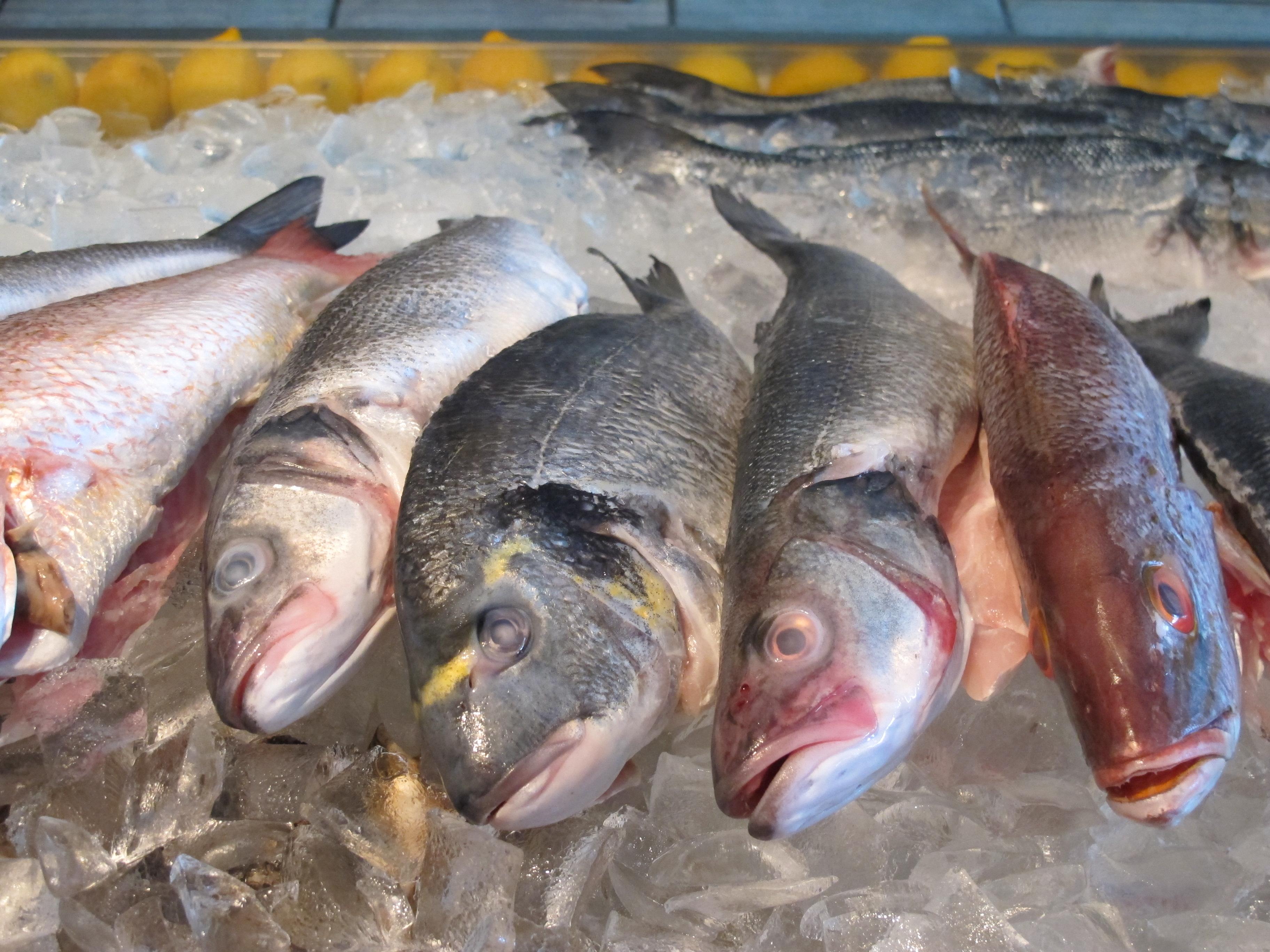 Westfield's Limani Seafood Grill Adds Fresh Fish Market - Westfield NJ News