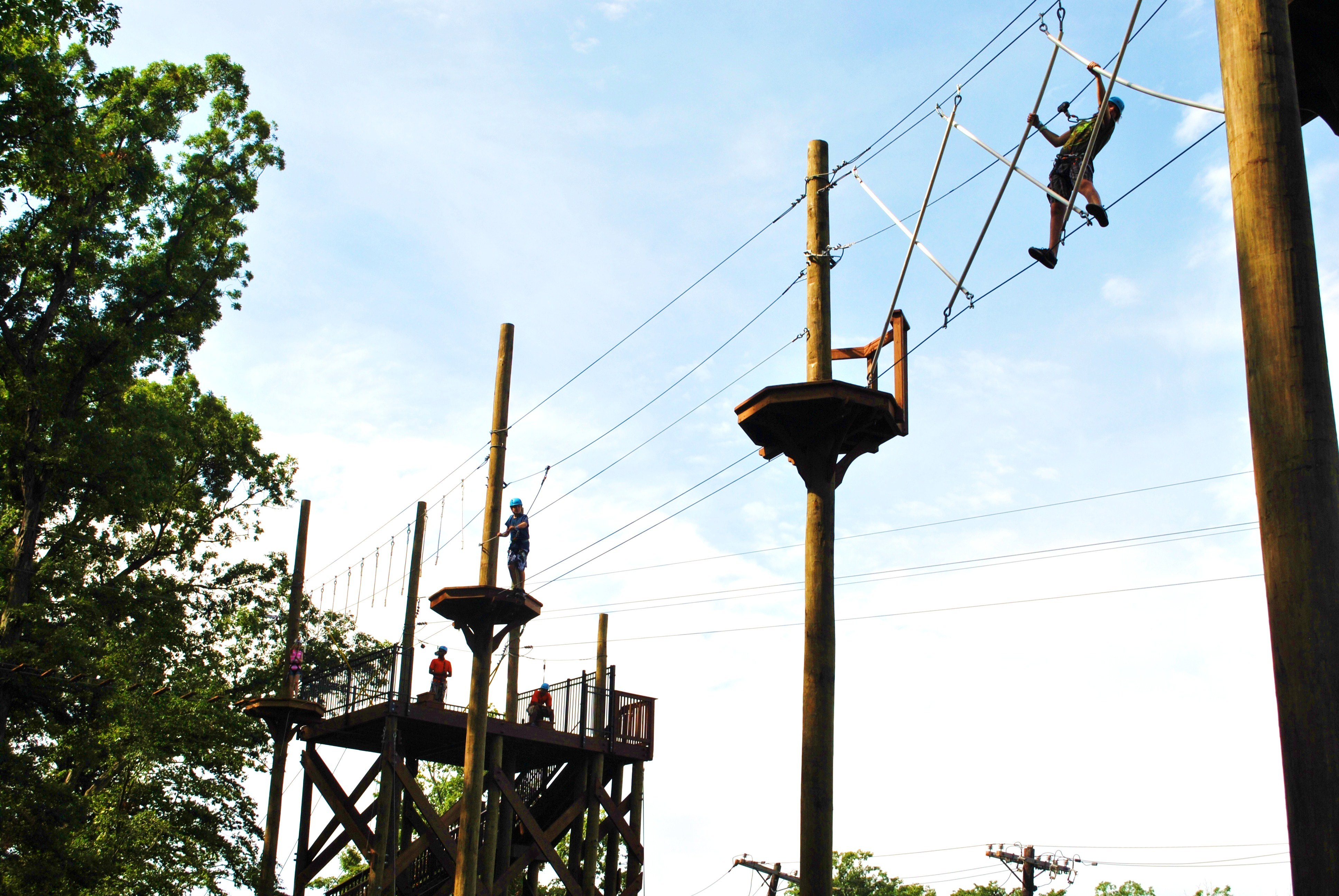 Treetop Adventure Reopens at Turtle Back Zoo in West Orange - News ...