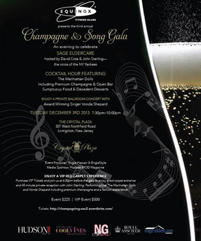 'Champagne & Song' Gala on Dec. 3 to Benefit SAGE Eldercare Will Feature Concert by Vonda Shepard, photo 3