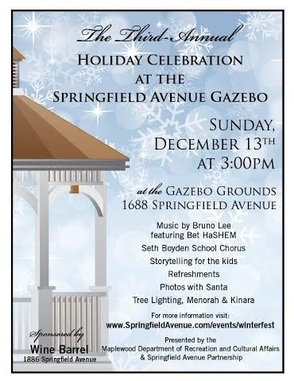 Carousel_image_ea197dcb4d8dd6a21b87_holiday_celebration_springfield_ave
