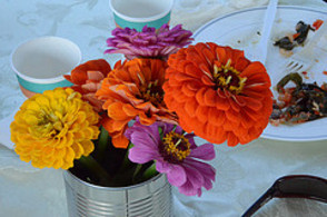 Flowers from the Sparta Community Garden