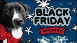 Thumb_def025acc2b5d9509aaa_black_friday