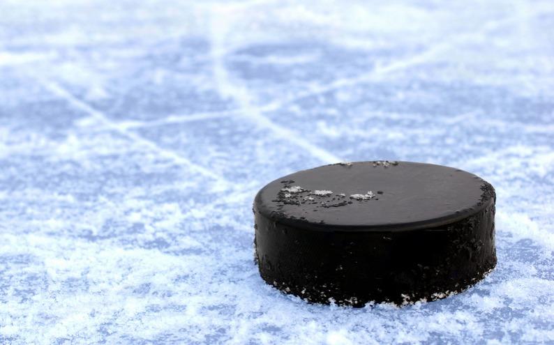 9bcd737a188fde796ec8_ice_hockey.PNG