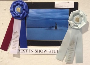 Molly Curly's photograph won Best in Show