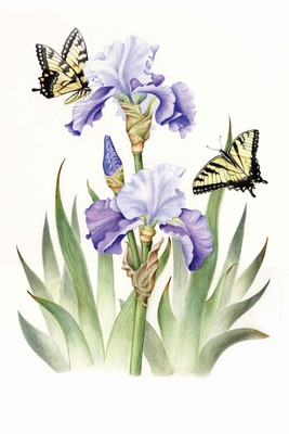 Award-Winning Botanical Artist Exhibits Her Work at Trailside Nature & Science Center, photo 2