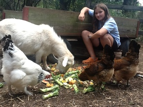 Unity Charter School helps create Environmental Harmony while Supporting Local Farm , photo 5