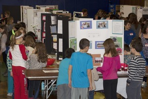 Students Impress at South Mountain School Science Fair, photo 1