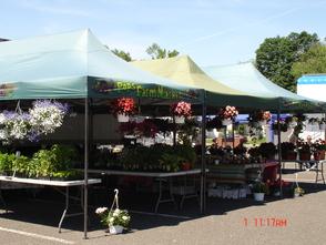 Edison Farmer's Market