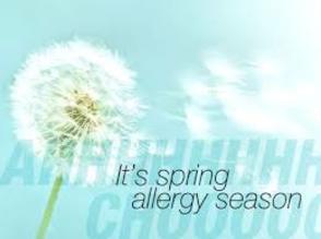 Carousel_image_7451ce05734af479cb22_allergies